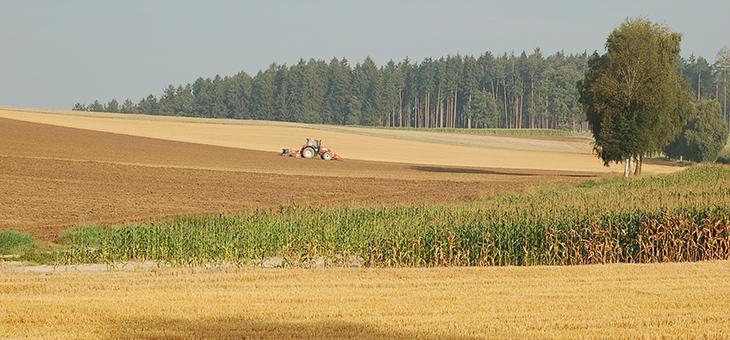 Forschung für eine nachhaltige Biomassenutzung im Rahmen der Bayerischen Bioökonomiestrategie